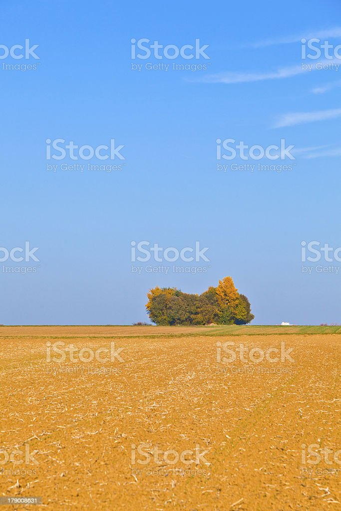 natural full frame background with wtree and field after harvest royalty-free stock photo