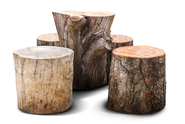Natural furniture Natural chair and table for garden furniture mad from wooden log isolated on white log stock pictures, royalty-free photos & images