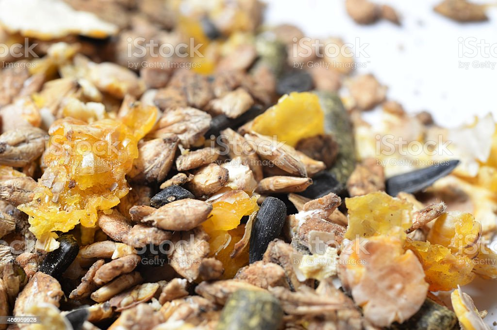 natural grain sportive  muesli background. for horse. macro stock photo