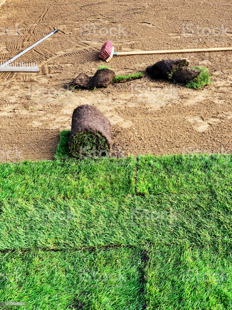 Natural grass carpets rolled out in the garden stock photo