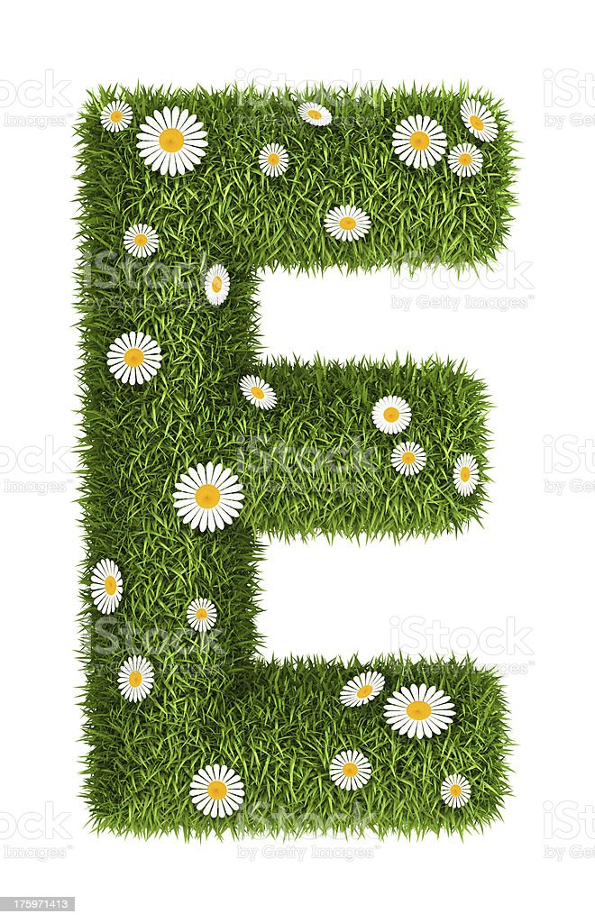 Natural grass letter E royalty-free stock photo