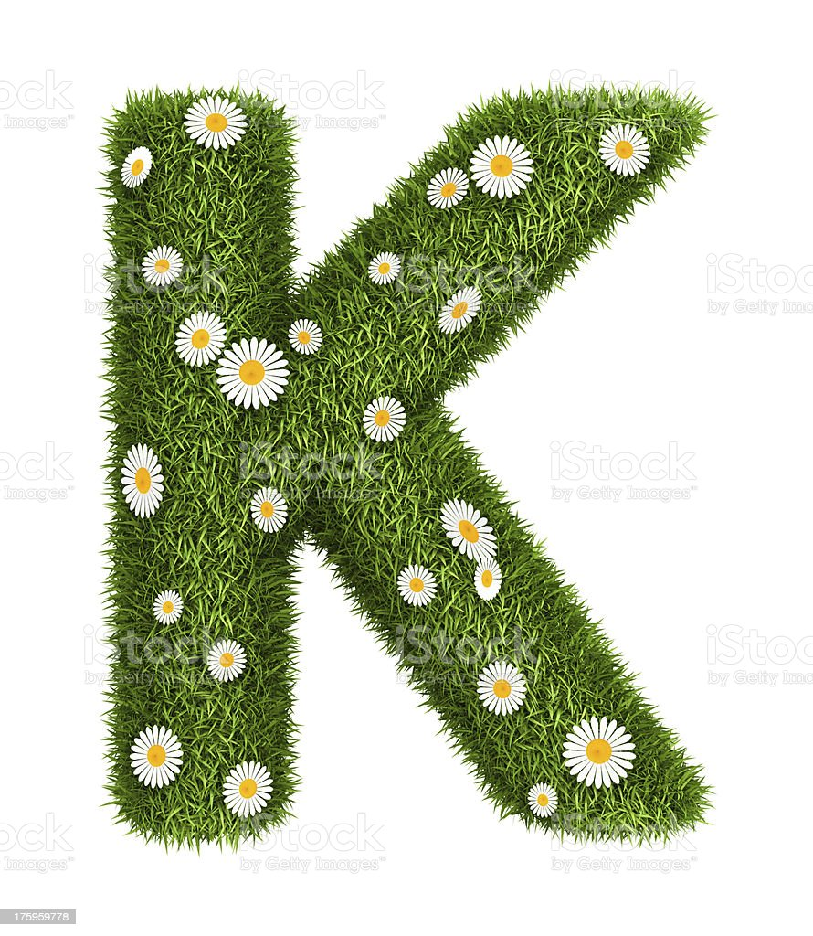 Natural grass letter K royalty-free stock photo