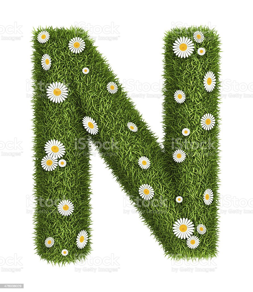 Natural grass letter N royalty-free stock photo
