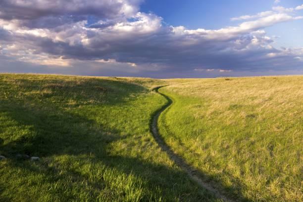 Natural Grassland Nose Hill Public Park Calgary Alberta Springtime stock photo