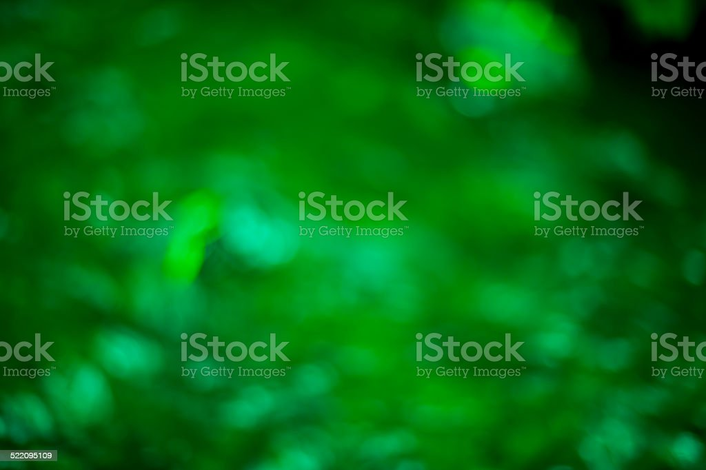natural green background stock photo