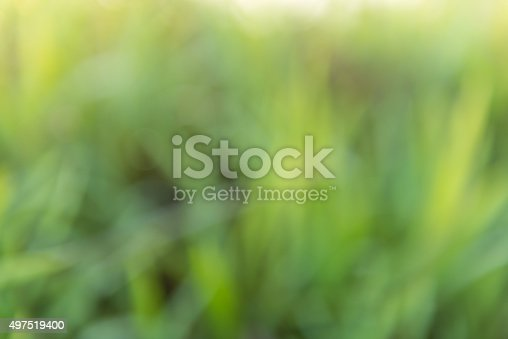 istock natural green Blur background 497519400