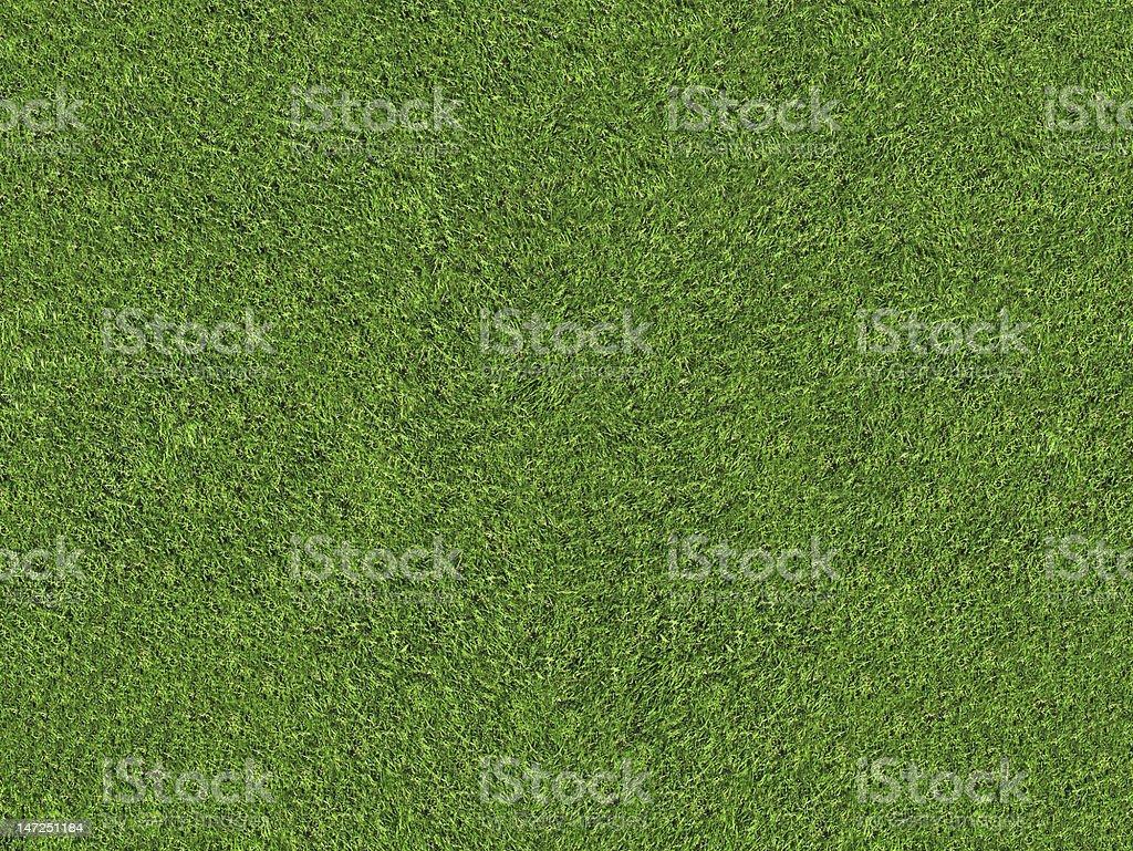 natural green grass field royalty-free stock photo