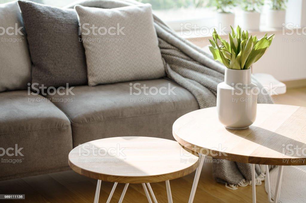 Natural grey living room interior stock photo