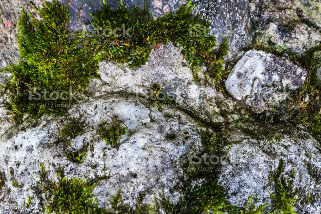 Natural hard rock or stone texture surface as background royalty-free stock photo