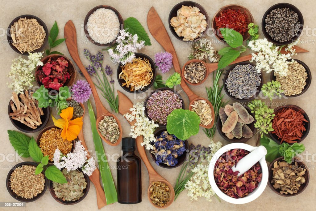 Natural Healing Herbs and Flowers stock photo