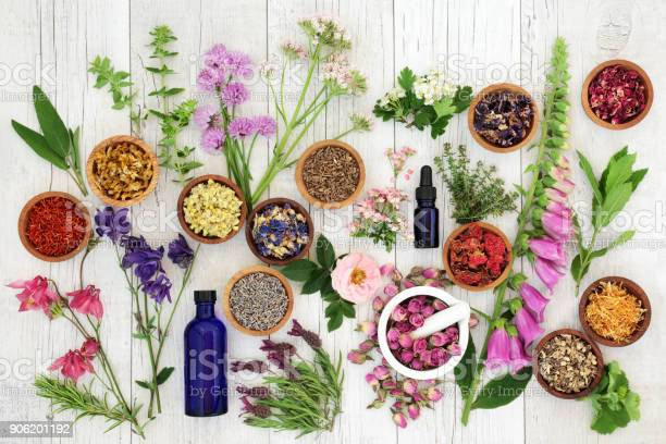 Photo of Natural Herbal Medicine