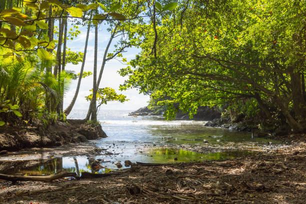 Natural hidden bay near a botanical garden on Big Island, Hawaii stock photo