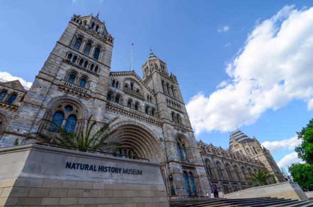 Museo de historia natural de Kensington, Londres - foto de stock