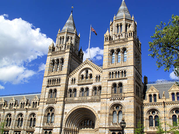 Natural History Museum stock photo