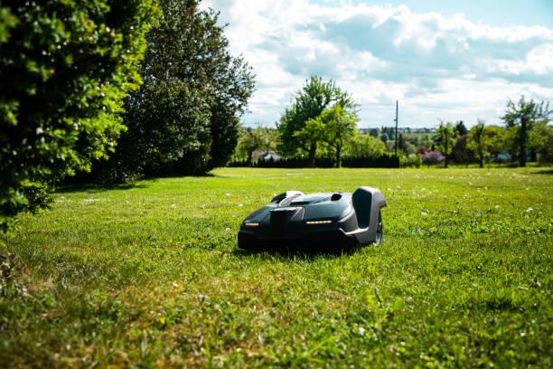 Natural Home Garden Meadow Robotic Mower Mowing Grass stock photo