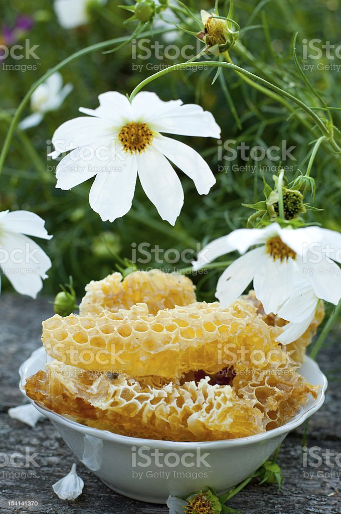 Natural honey in the comb royalty-free stock photo