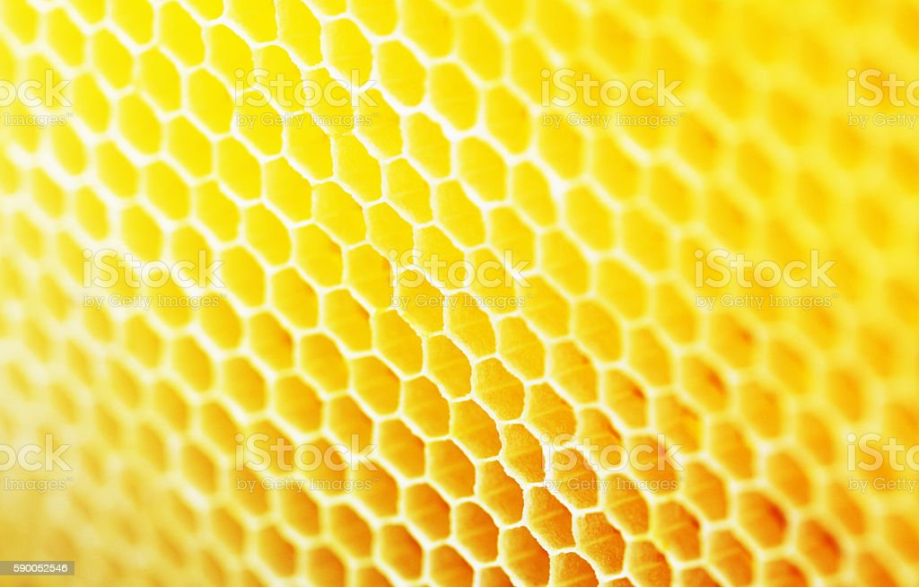 Natural honeycomb background stock photo more pictures of natural honeycomb background royalty free stock photo voltagebd Image collections