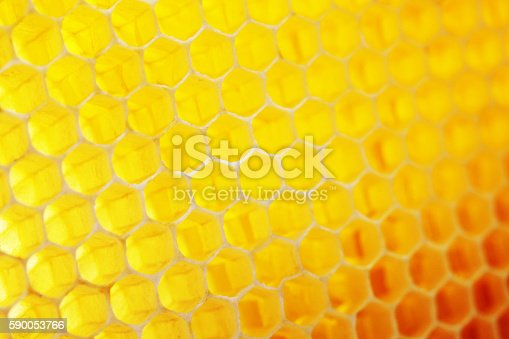istock Natural honeycomb background 590053766