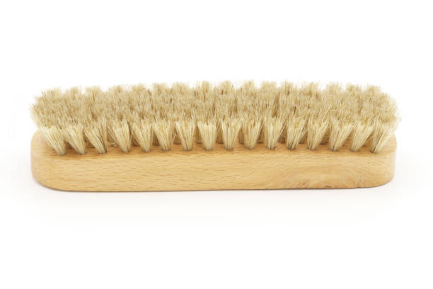 Natural horsehair brush on a white background. Horsehair brush on white background. Leather shoe polishing. Cleaning. Wax scrubbing brush stock pictures, royalty-free photos & images