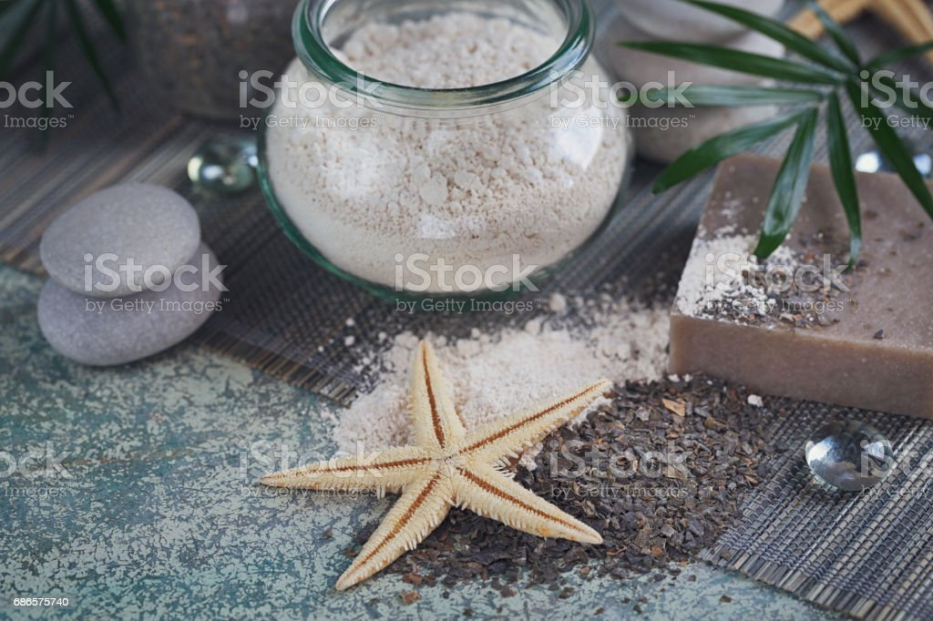 Natural ingredients for homemade facial and body mask, scrub royalty free stockfoto