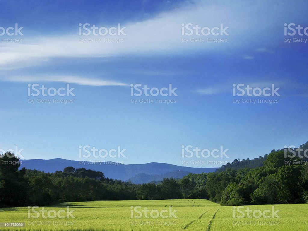 Natural landscape royalty-free stock photo