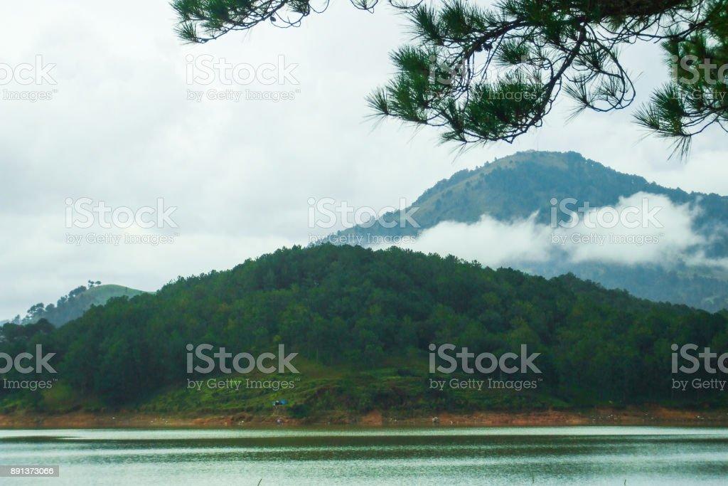 Natural landscape stock photo