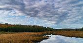 istock Natural Landscape - Wetlands 1279052359