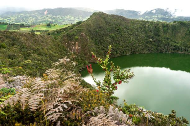 paisagens naturais da lagoa de guatavita em sesquilé, cundinamarca - colômbia. - laguna - fotografias e filmes do acervo