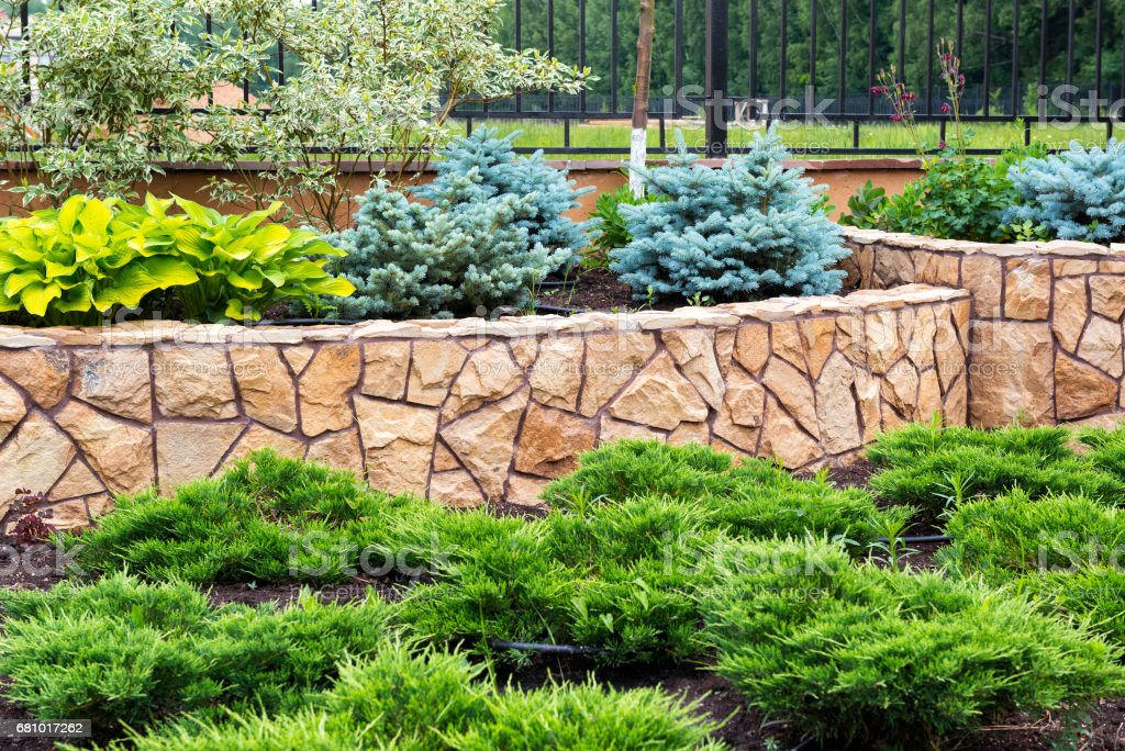 Natural landscaping in home garden - Photo