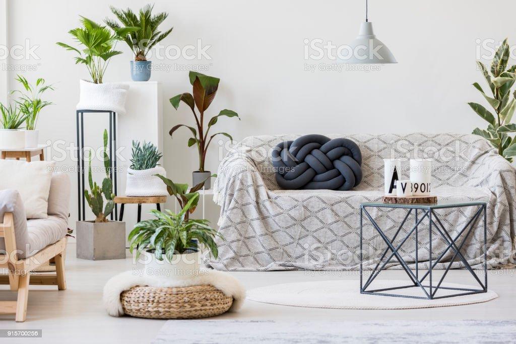 Natürliches Wohnzimmer Interieur Mit Pflanzen Stockfoto und mehr ...