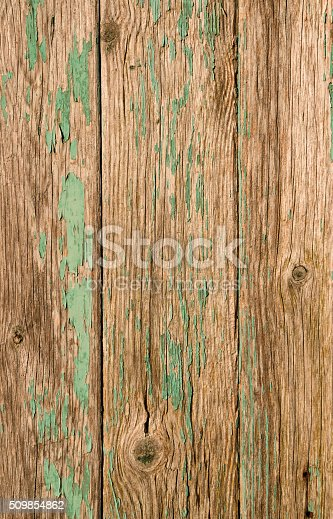 894368086 istock photo Natural look wood background 509854862