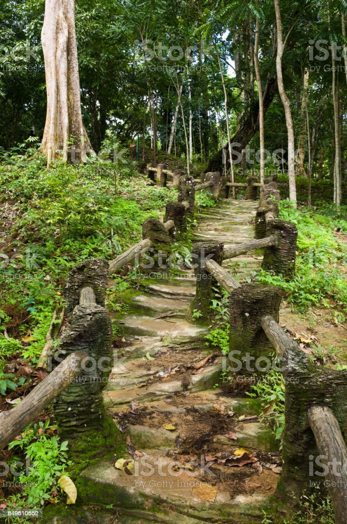 Natural Man Made Wood And Soil Steps In Jungle Stock Photo Download Image Now Istock