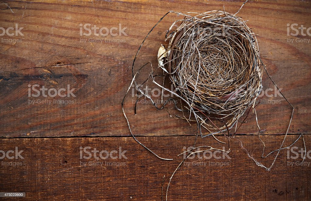 Natural Nest on Weathered Board stock photo