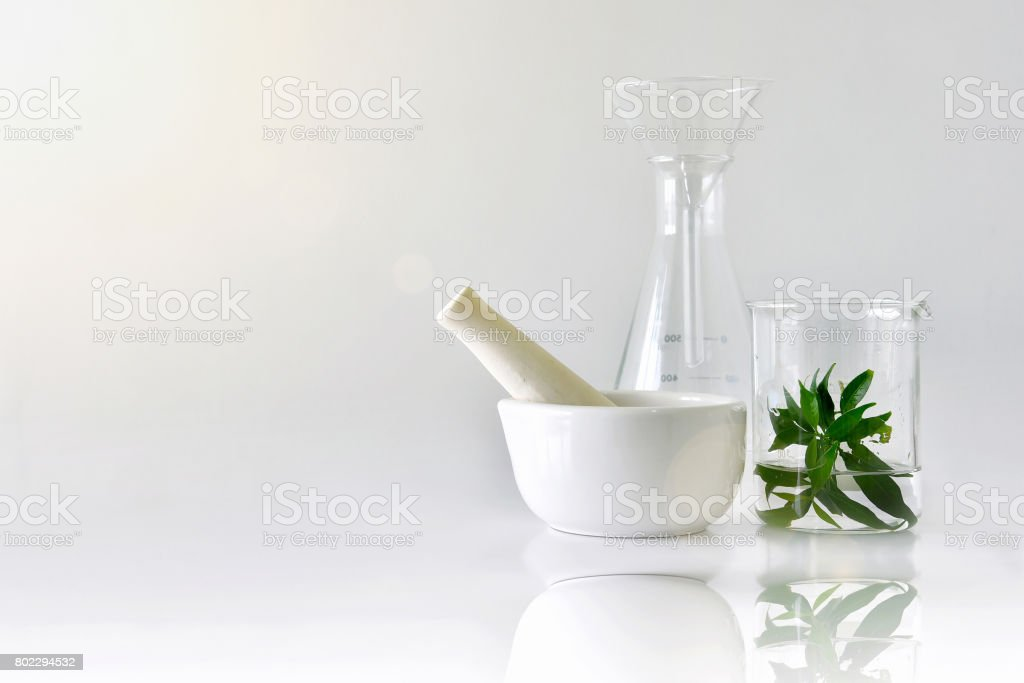 Natural organic botany and scientific glassware, Alternative herb medicine, Natural skin care beauty products stock photo
