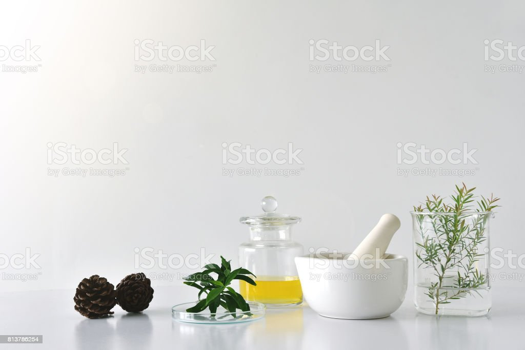Natural organic botany and scientific glassware, Alternative herb medicine, Natural skin care beauty products, Research and development concept. stock photo
