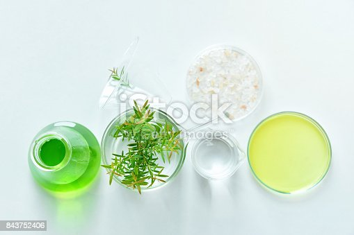 istock Natural organic botany and scientific glassware, Alternative herb medicine, Natural skin care cosmetic beauty products, Research and development concept. 843752406