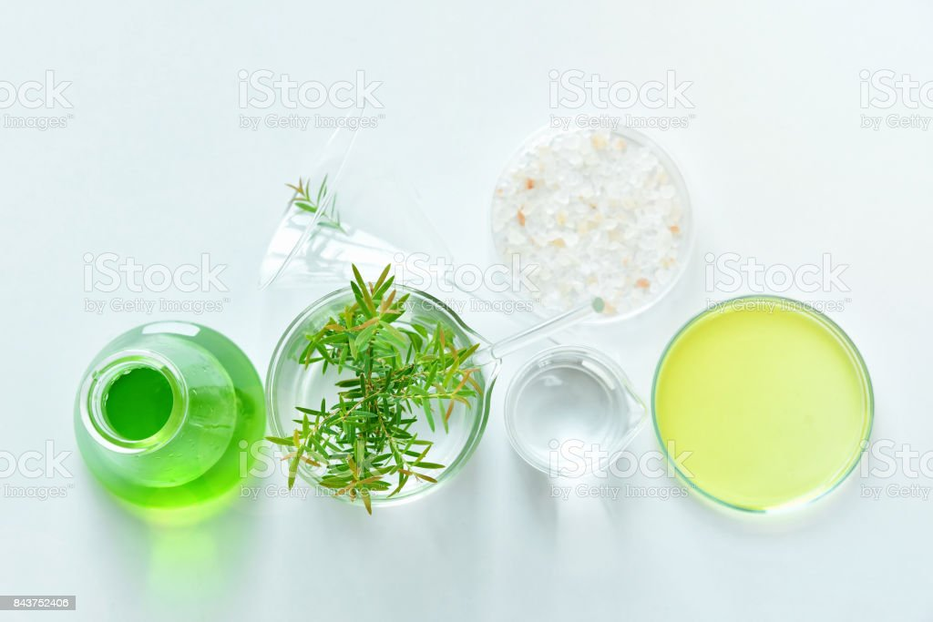 Natural organic botany and scientific glassware, Alternative herb medicine, Natural skin care cosmetic beauty products, Research and development concept. stock photo