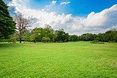 自然公園と青い空