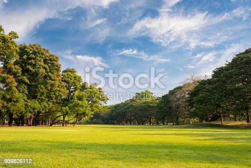 istock Natural parks with blue sky. 939826112