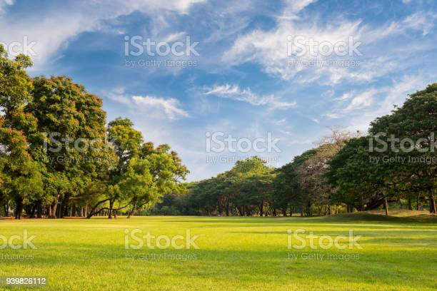 Photo of Natural parks with blue sky.