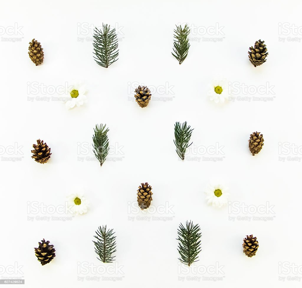 Natural pattern of winter plants on white background. Flat lay stock photo