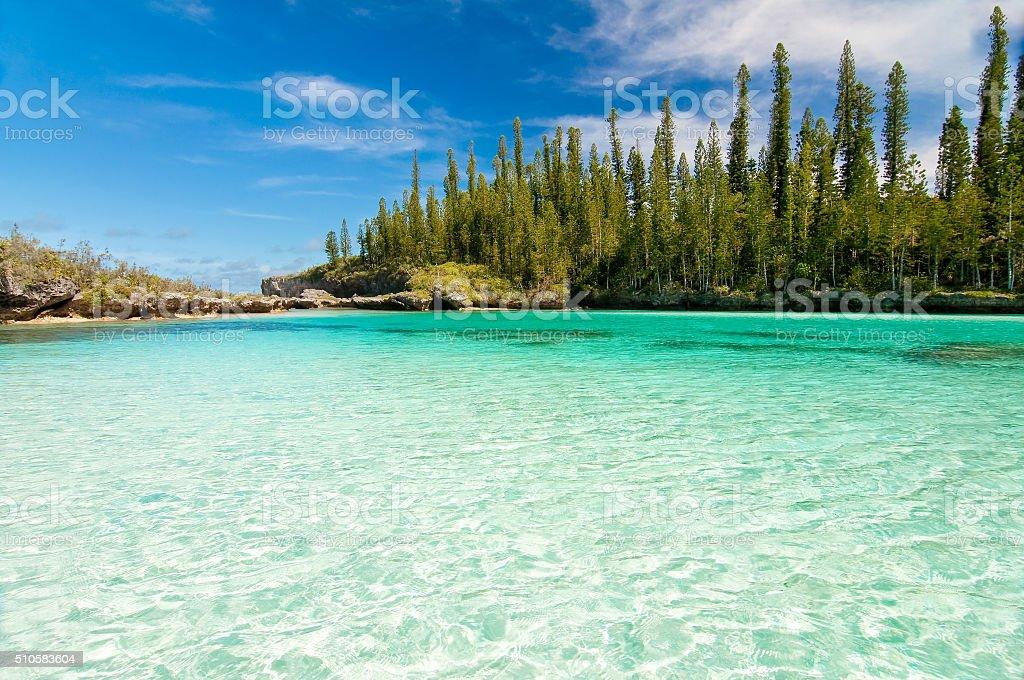 Piscine naturali di oro baia isola dei pini nuova caledonia fotografie stock e altre immagini - Isola di saona piscine naturali ...