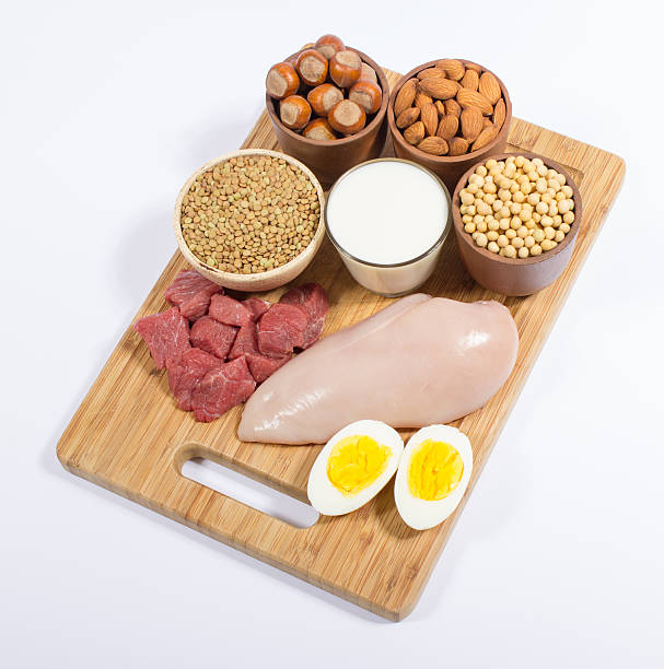 Natural products containing plant and animal proteins. Various sources of plant and animal protein. amino acid stock pictures, royalty-free photos & images