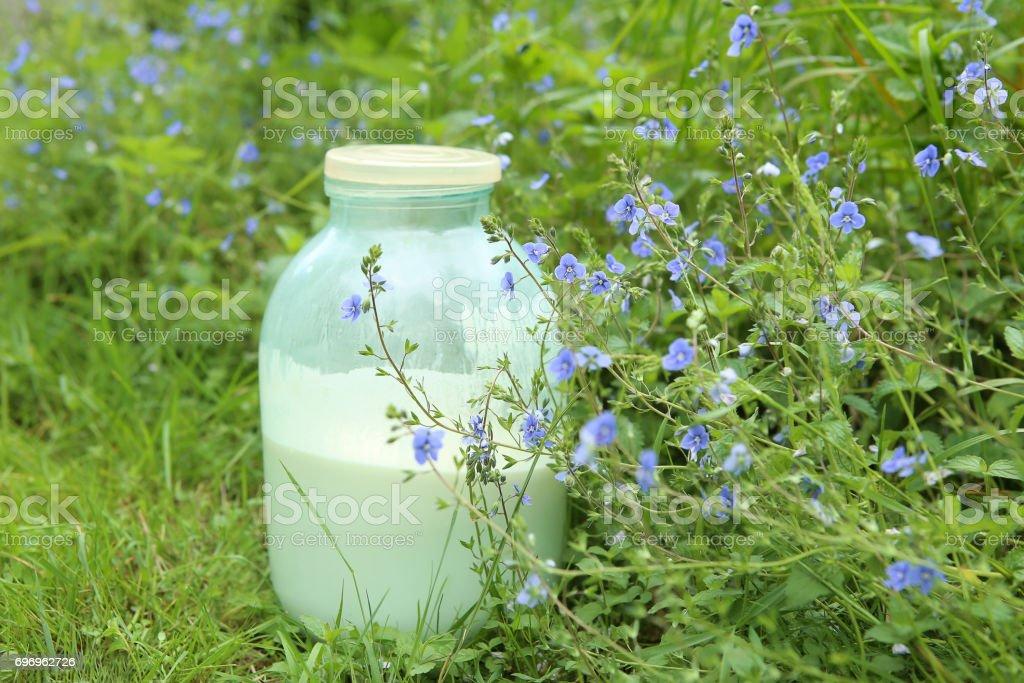 Natural raw milk in jar. stock photo