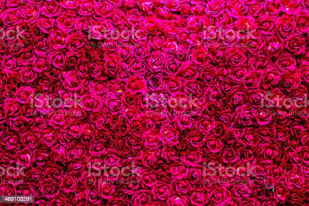 Natural red roses background of valentines day picture id469103291?b=1&k=6&m=469103291&s=612x612&h=juupece2lpdez yxuikmy2wf6xtdwik3cbixjjtwmb0=