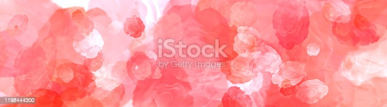 Natural red roses on the best big background panorama. Background with flowers. Valentines love background. Red abstract background.