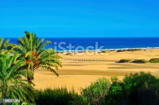 istock Natural Reserve of Maspalomas Dunes, in Gran Canaria 188061054