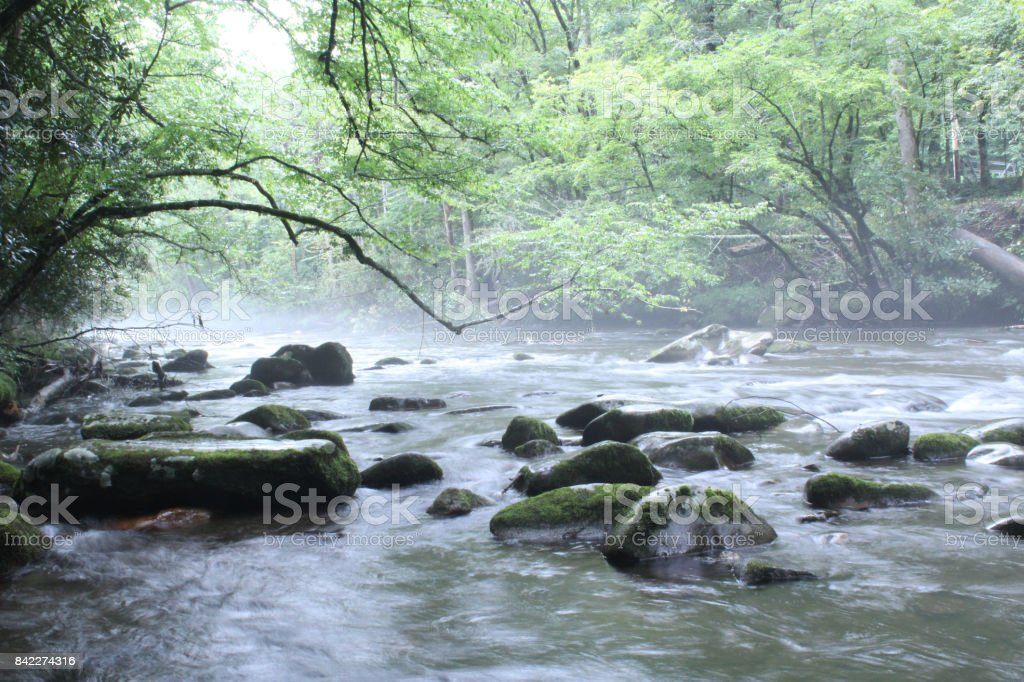 Natural River in the Morning with Steam and Mist stock photo