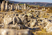 Natural rock phenomenon, Pobiti Kamani, Aksakovo Municipality, Varna District, Bulgaria. In the late afternoon.Selective focus with shallow depth of field.