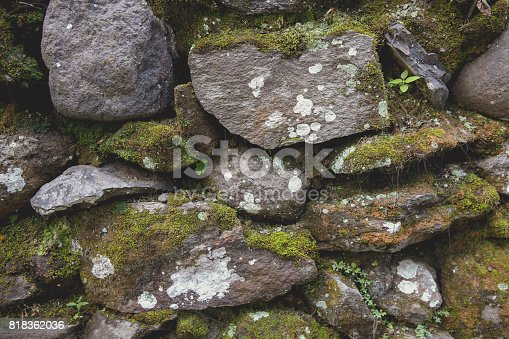 Natural rock slate with green moss background